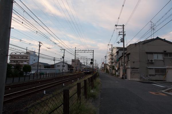 _MG_2666