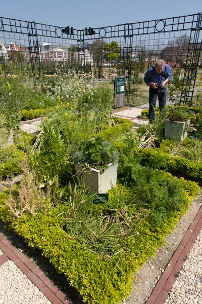 Ziergarten mit Blumen und Gemüse